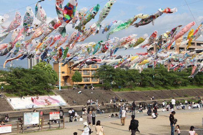 5日(土)まで開催。高槻市「第27回こいのぼりフェスタ1000」へ子供と行ってきました。