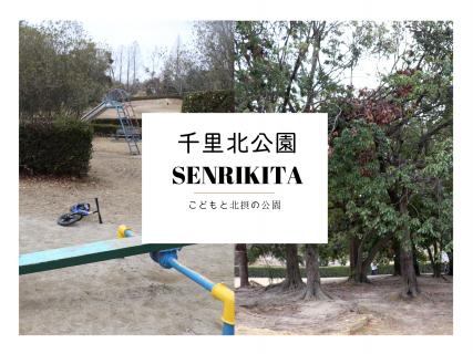 万博記念公園の次に広い、吹田の「千里北公園」へ。
