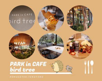 子連れで千里南公園(吹田市)にオープンしたカフェ「PARK in CAFE bird tree(バードツリー)」へ。駐車場、オムツ交換台、公園遊具など。